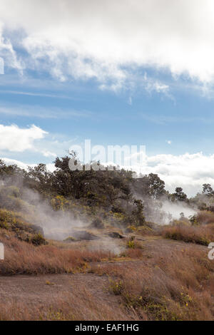 Steam vents near Kilauea volcanic crater Hawaii USA - Stock Photo