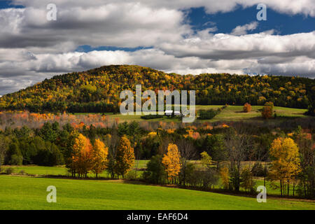 Farmhouse among green fields and forest trees in Fall color on Blue Mountain rolling hills Vermont USA - Stock Photo