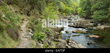 The a stone path lines the river Glaslyn as it flows between the trees and rocks of the Aberglaslyn Pass in Snowdonia, - Stock Photo