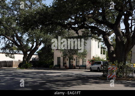 Chamber of Commerce building sits in the shade of centuries-old Live Oak trees on Market Street in historic downtown - Stock Photo