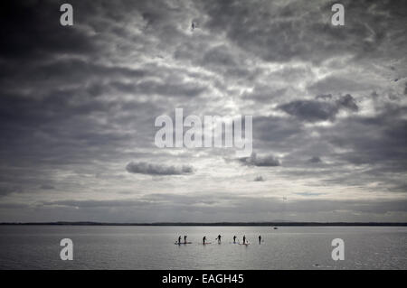 Stand-up Paddle Boarders on Strangford Lough, Near Grey Abbey, County Down, Northern Ireland - Stock Photo
