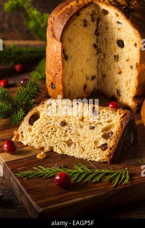 Homemade Panettone Fruit Cake Ready for Christmas - Stock Photo