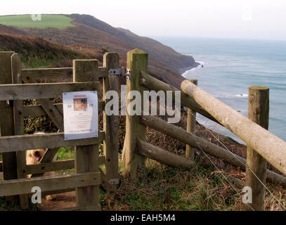 Dog missing poster on a kissing gate on the south west coast path, Millook, Bude, Cornwall, UK - Stock Photo
