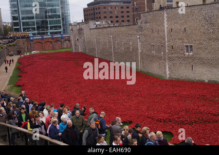 Visitors to the Tower of London view the art installation 'Blood Swept Lands and Seas of Red' in commemoration of - Stock Photo