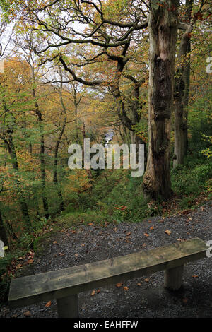 View of River Wharfe from Strid Wood, Wharfedate at Bolton Abbey, Skipton, North Yorkshire, England - Stock Photo
