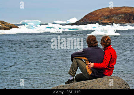 Man and woman iceberg watching from the shore with pack ice in the harbour, Northern Peninsula, Newfoundland, Canada. - Stock Photo