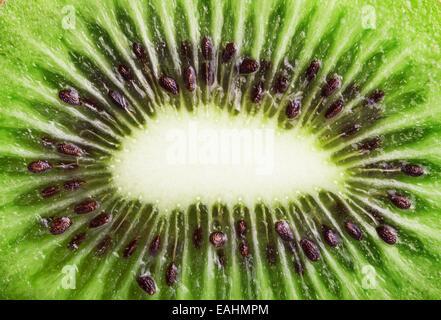 Slice Kiwi Fruit. Background for your design. Macro - Stock Photo