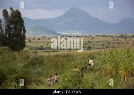 Bukwo district, Uganda is located on the eastern foothills of Mount Elgon. - Stock Photo