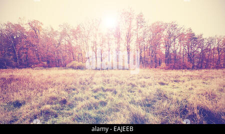 Vintage filtered photo of an autumn field. - Stock Photo