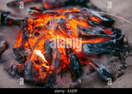 Campfire closeup - Stock Photo