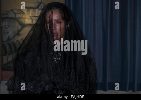 Portrait of young woman wearing mourning veil - Stock Photo