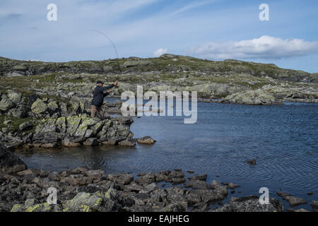 Trout fly fishing in a lake, Hardangervidda National park Norway - Stock Photo