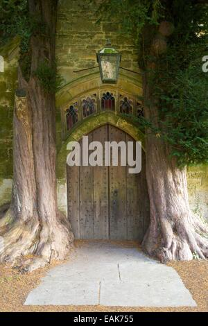 Ancient yew trees growing in North Porch, St Edwards Church, Stow-on-the-Wold, Gloucestershire, Cotswolds, England, - Stock Photo