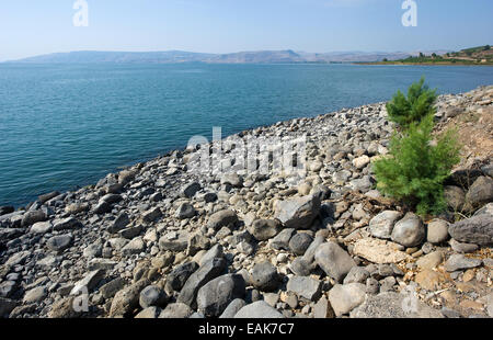 The beach of Capernaum on the sea of Galilee - Stock Photo