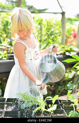 Blond girl wearing sundress watering potted seedlings in greenhouse - Stock Photo