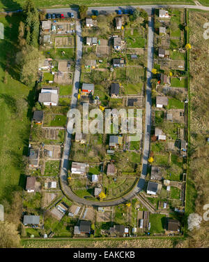 Allotment gardens on Leopold-Zunz-Strasse, aerial view, Detmold, North Rhine-Westphalia, Germany - Stock Photo