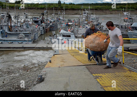 Commercial Fishermen Haul In Catch At The Boat Harbor, Dillingham, Alaska - Stock Photo