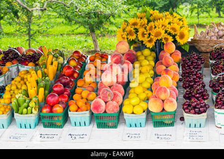 Canada,Ontario,Niagara-on-the-Lake, fresh fruit and vegetables on display at a road side stand - Stock Photo