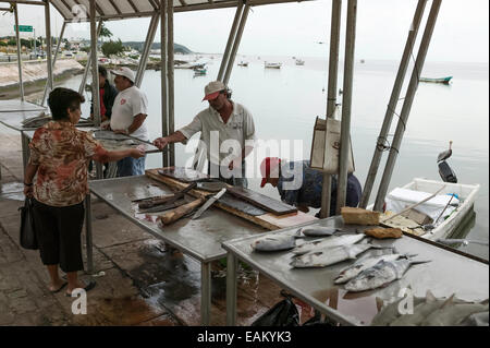 Mexican fishermen selling their catch from stands on the Melecon, Campeche, Mexico. - Stock Photo