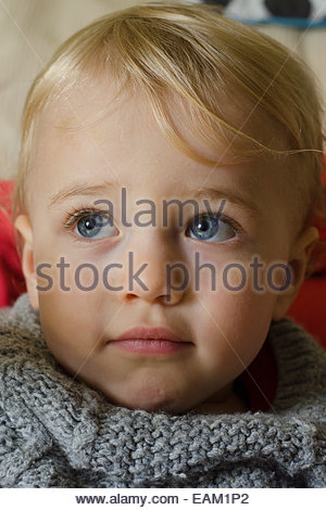 portrait of a blond blue-eyed 18-month old boy wearing a knitted jumper - Stock Photo
