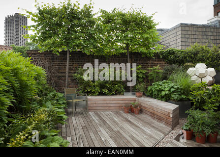Decked area with decked bench storage, Wisteria and hostas on left and pleached limes at rear with modern geometric - Stock Photo