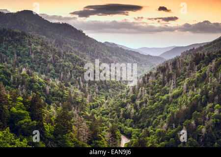 Smoky Mountains, Tennessee, USA mountainscape at newfound gap. - Stock Photo