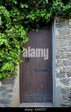 Narrow brown wooden door with large black hinges in old stone wall and surrounded by emerald foliage in Welsh town - Stock Photo