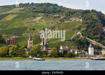 View across middle Rhine River to hillside vineyard above the Wernerkapelle ruin in Bacharach am Rhein, Rhineland, - Stock Photo
