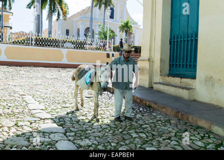TRINIDAD, CUBA - MAY 8, 2014: Old men with donkey for rent in Trinidad. Working in tourism is the only way Cuban - Stock Photo