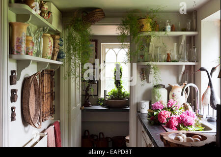 Colourful vases on shelves in country kitchen galley - Stock Photo