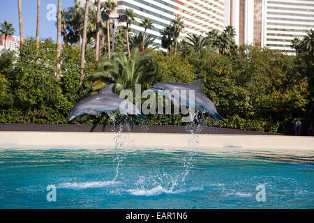 Siegfried and Roy's Secret Garden and Dolphin Habitat at Mirage Hotel, Las Vegas, Nevada, USA - Stock Photo
