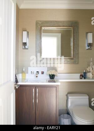 Washbasin set in cupboard unit in cloakroom, USA - Stock Photo