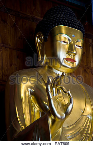 A golden Buddha sits inside Jogyesa Shrine and Temple. - Stock Photo