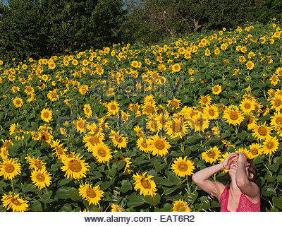 A woman laughing next to a field of sunflowers in Olot. - Stock Photo