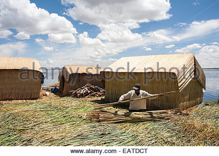 A Peruvian man weaving reeds into a roof for a reed house. - Stock Photo