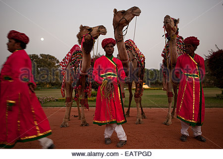 Men offer camel-back rides at the Rambagh Palace in Jaipur, India. - Stock Photo