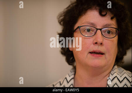 Aberystwyth, Wales, UK. 20th November, 2014.    ELIN JONES Plaid Cymru / The Party of Wales Assembly Member (AM) - Stock Photo