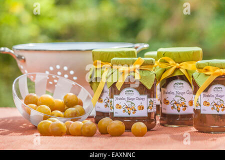 Mirabelle chutney with decoration in the garden - Stock Photo