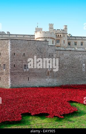 Ceramic red poppies at the Tower Of London, commemorating World War ONe soldiers who fell - Stock Photo
