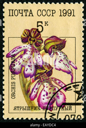RUSSIA - CIRCA 1991: stamp printed by Russia, shows flower Orchids, circa 1991. - Stock Photo