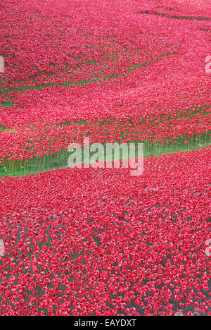 Sea of Poppies at the Tower - Stock Photo