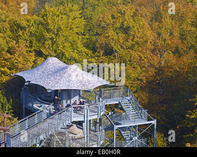 Treetop walkway in Hainich National Park, Germany - Stock Photo