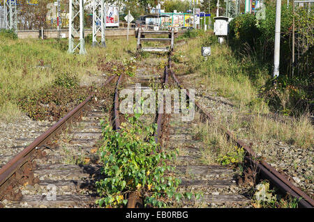 Old abandoned  rusty railway tracks with grass overgrown - Stock Photo