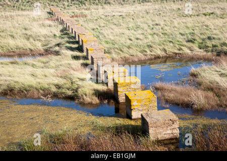 Concrete blocks created as tank traps stepping stones across marshland, Alderton, Suffolk, England, UK - Stock Photo