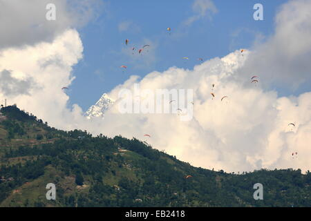 Paragliders crowd the skies over Phewa tal-lake after jumping from the lesser slopes of the Annapurnas range-Himalayas - Stock Photo