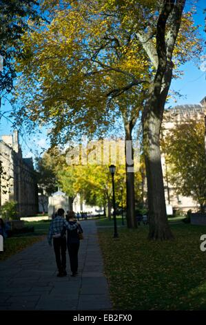 A couple walks beneath the tall trees on the campus of Yale University. - Stock Photo