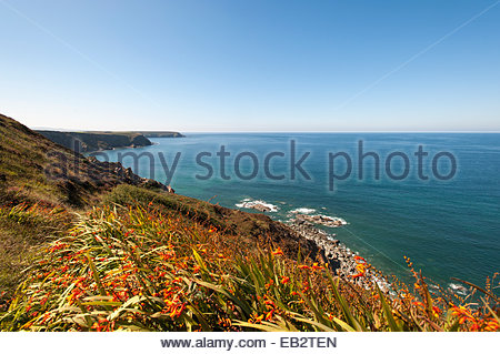 Looking west along the northern cliffs south of Portreath in Cornwall - Stock Photo