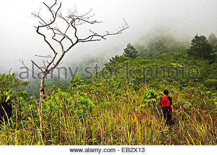 A woman trekking on the caldera ridge of Mount Galunggung. - Stock Photo