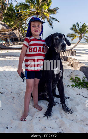 A small boy playing with a Great Dane at a resort on a tropical island. - Stock Photo