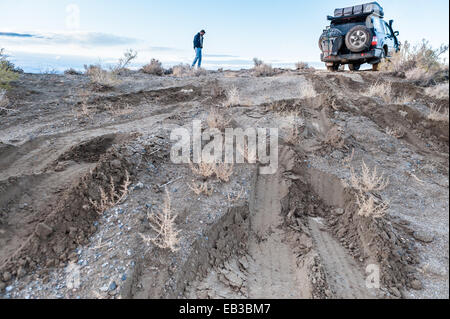 Man checking road conditions on muddy track, Black rock desert, Nevada, America, USA - Stock Photo